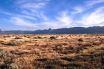 Karoo South Africa